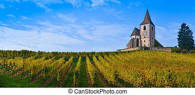 hunawihr, viña, alsacia, francia