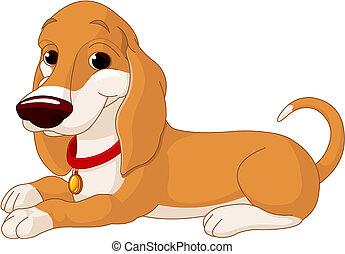 hund, cute, liggende