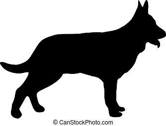 hund, deutsch, silhouette, schafhirte