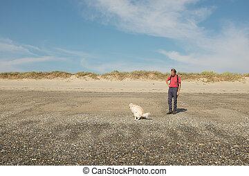 hund, entleeren darmes, auf, strand.