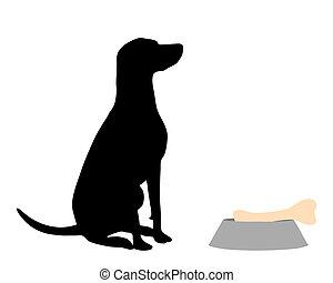 hund, fütterung