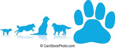 hund, hintergrund, pfote