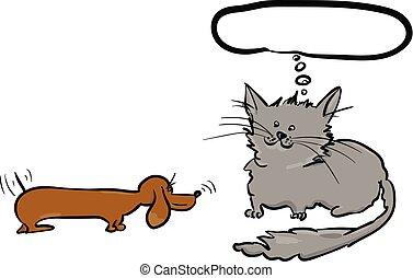 hund, katz