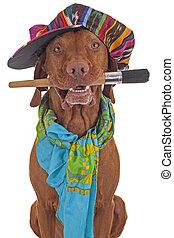 hund, lackierer, künstler