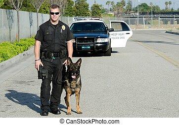 hund, polizei