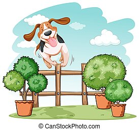 hund, rüber springen, der, zaun