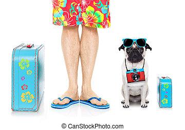 hund, sommer urlaub