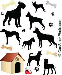 hundkapplöpning, silhouettes