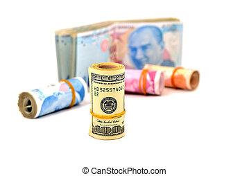 money, dollars, Turkish money isolated on white background