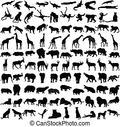 Hundred silhouettes of wild animals from Africa
