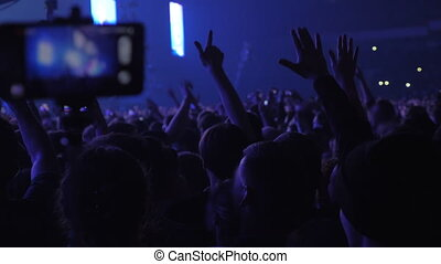 Hundreds of vigorous music fans at the concert
