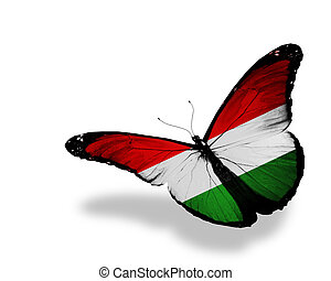 Hungarian flag butterfly flying, isolated on white ...