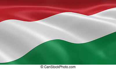 Hungarian flag in the wind