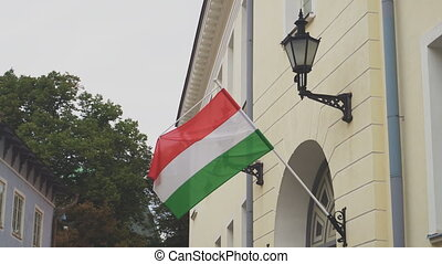 Hungarian flag on a flagpole waving on house.