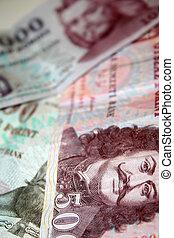 Hungarian Forint notes, closeup.