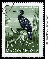 Great Black Cormorant - Hungary-CIRCA 1959: A stamp printed...