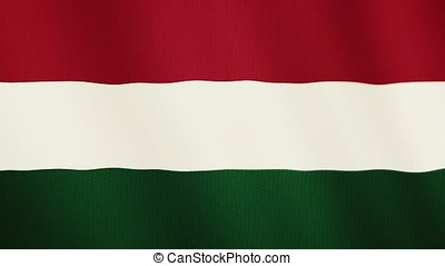 Hungary flag waving animation. Full Screen. Symbol of the country.