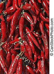 Hungary red htpepper - Hungary pepper