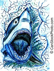Hungry Shark Drawing - Big angry shark jumping out of the...