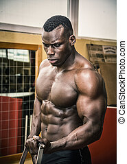Hunky muscular black bodybuilder working out in gym
