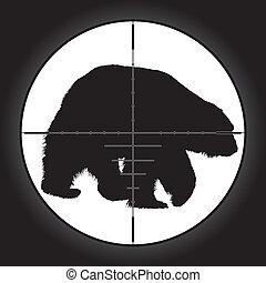 hunter sniper sc bear