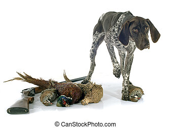 hunting games and dog