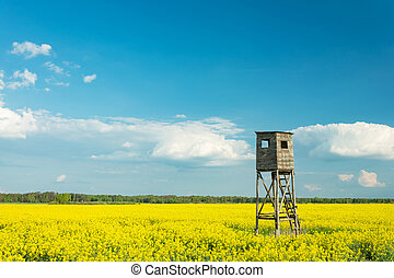 Hunting pulpit standing in a field of yellow rapeseed, white clouds on a blue sky