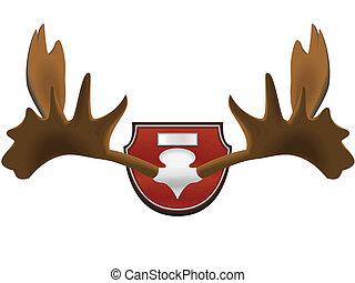 hunting trophy - horns - The hunting trophy - horns of an...