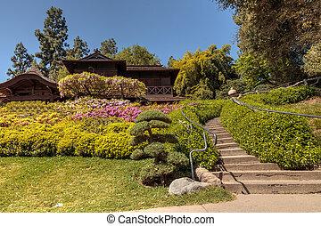 huntington, 庭, 植物園, 日本語