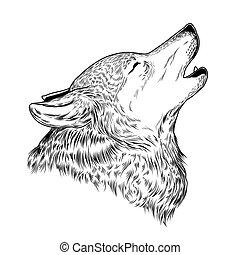 hurlement, vecteur, loup, illustration