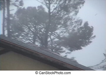 Hurricane: Roof Damage - A roof being damaged in a...