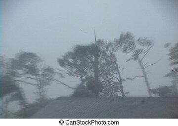 Hurricane Storm