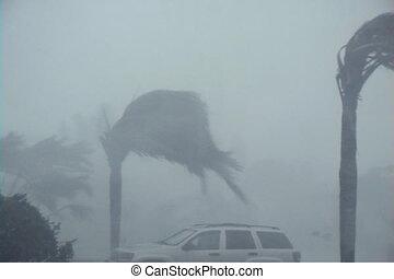 hurricane:, wind, und, regen