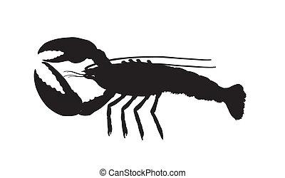 hurrying river cancer Vector illustration