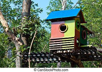 hus, fågel, färgrik