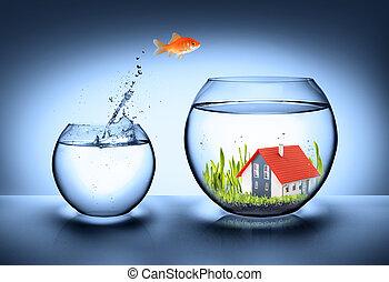 hus, fish, verklig, finna, -, egendom