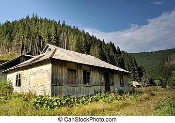 Hus, gammal, övergiven, Skogar