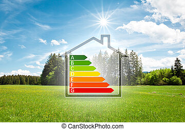 hus, in, den, grön, med, energi, effektivitet, graf