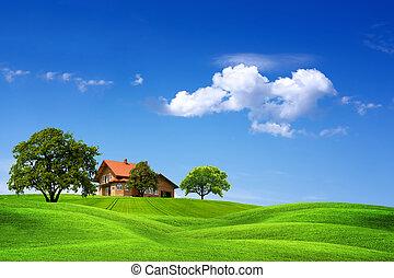 hus, och, grönt landskap