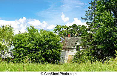 hus, sida, övergiven, land