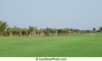 Husband and wife playing golf, fun