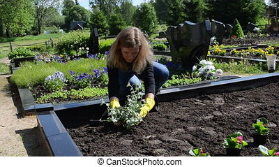 husband grave plant - Woman wife sit plants and flowers on...