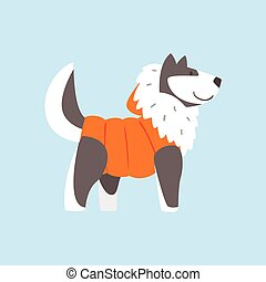Husky Dog In Padded Coat, Arctic Animal Dressed In Winter Human Clothes Cartoon Character