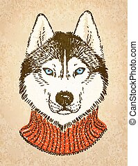 Husky Dog. Vector illustration, eps10. - Portrait of hipster...