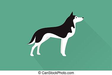 husky, sibérien, icône