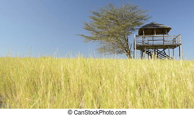 Hut in African Grass - Hand held footage of a hut against...