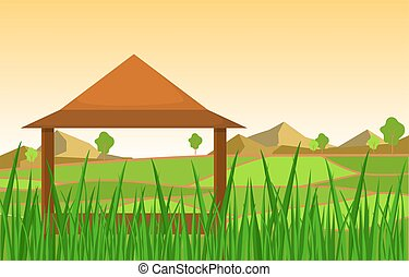 Hut in Asian Rice Field Green Paddy Plantation Agriculture ...