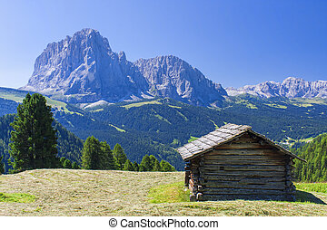 Hut in mountain landscape