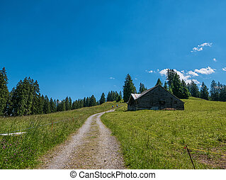 Hut in the Swiss mountains with a meadow and road - A road...