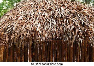 Hut palapa mexican jungle Mayan house roof wall detail
